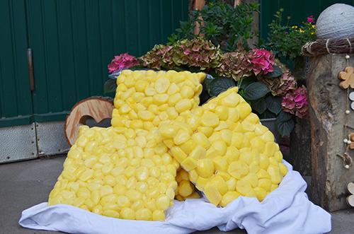 Kartoffeln in vakuumierten Verpackungseinheiten
