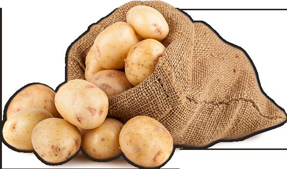 geöffneter Kartoffelsack
